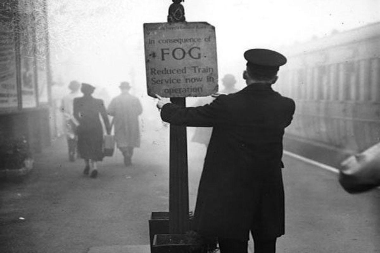 cartel niebla