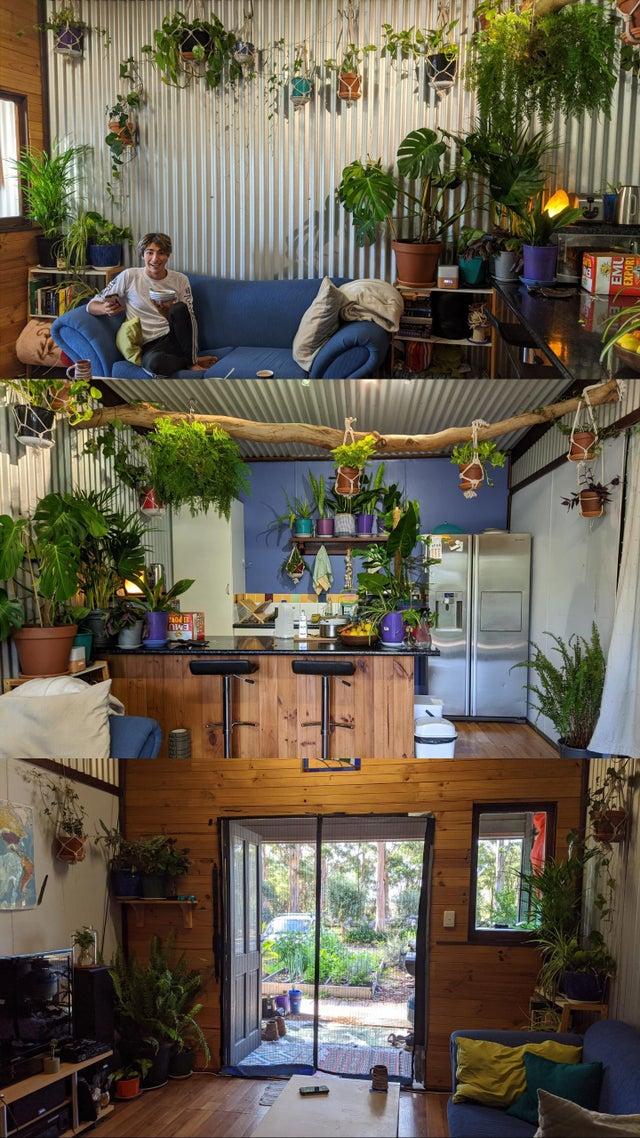 apartamento lleno de plantas