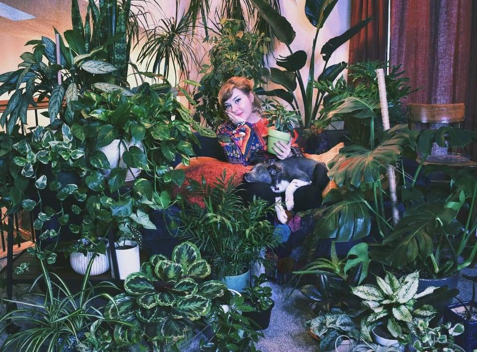chica con gatos y plantas