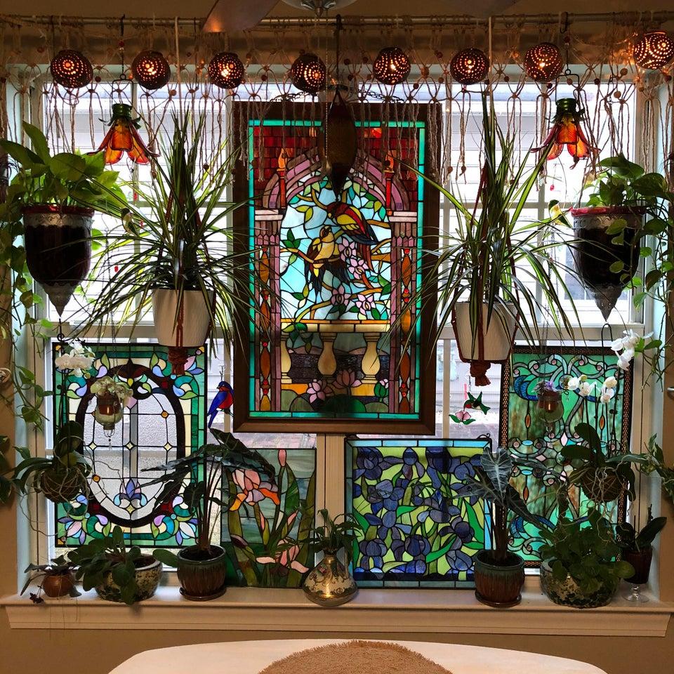vidriera con plantas