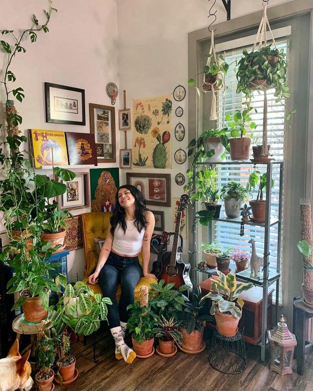 amante de las plantas