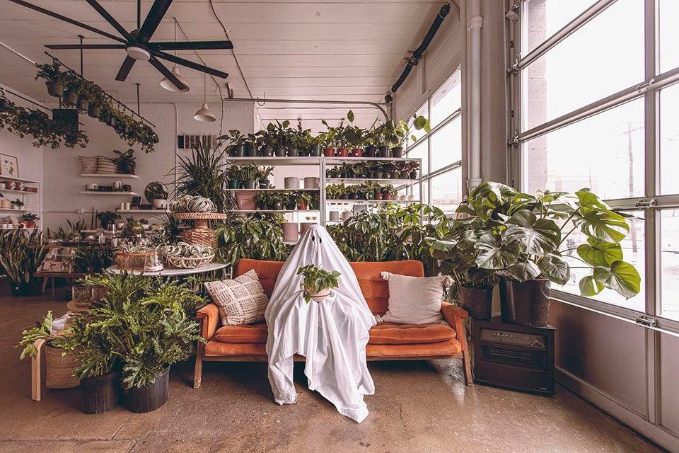 fantasma rodeado de plantas
