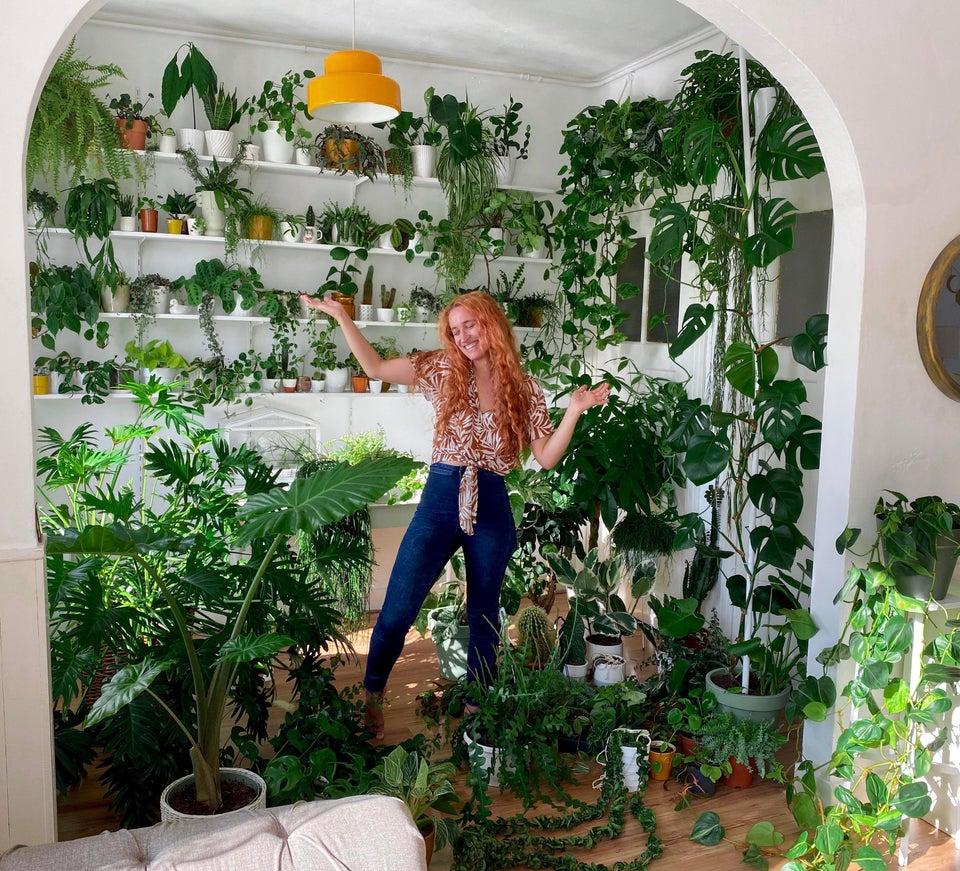 habitación llena de plantas