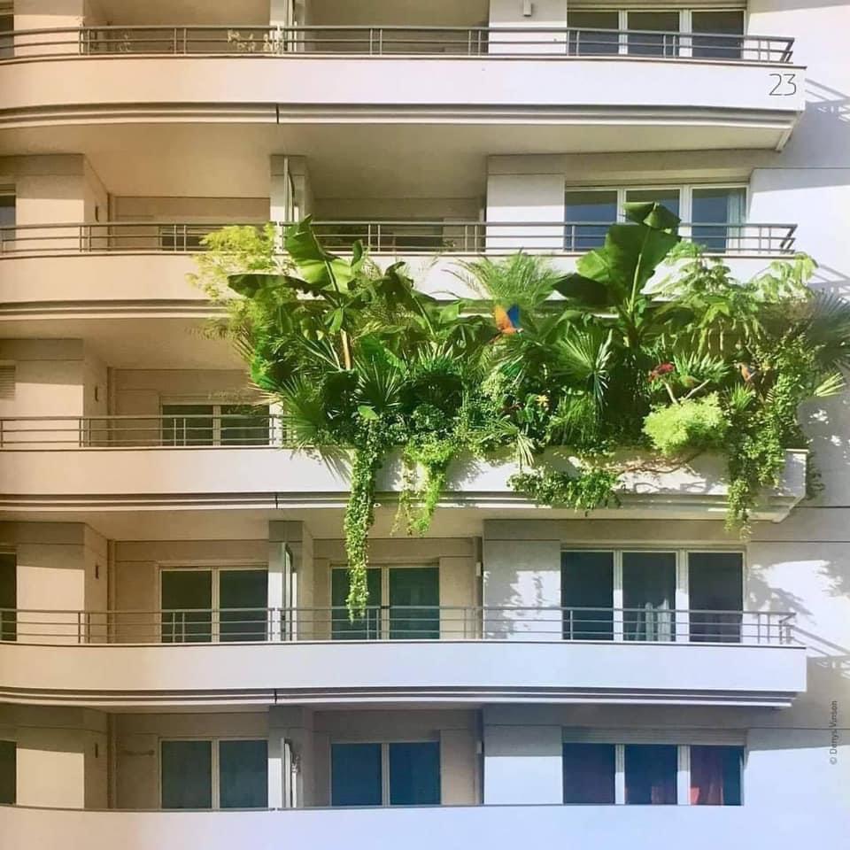 terraza llena de plantas