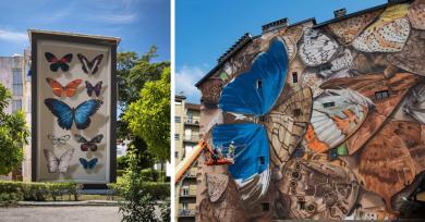 graffitis-mariposas