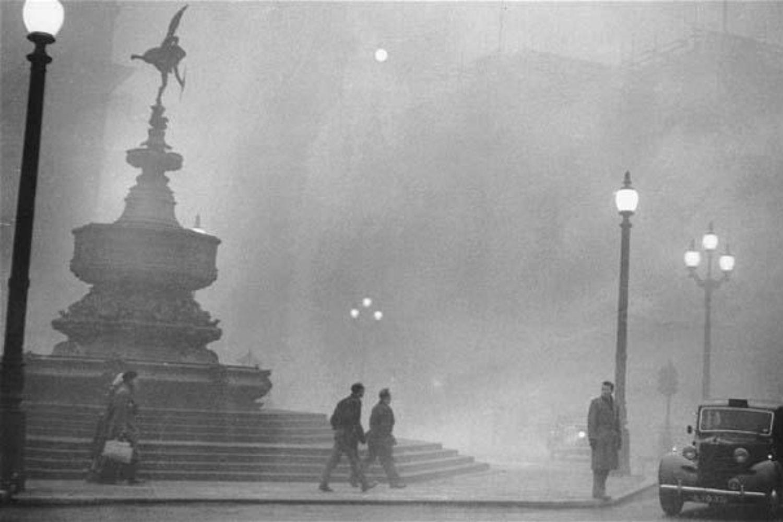 niebla plaza