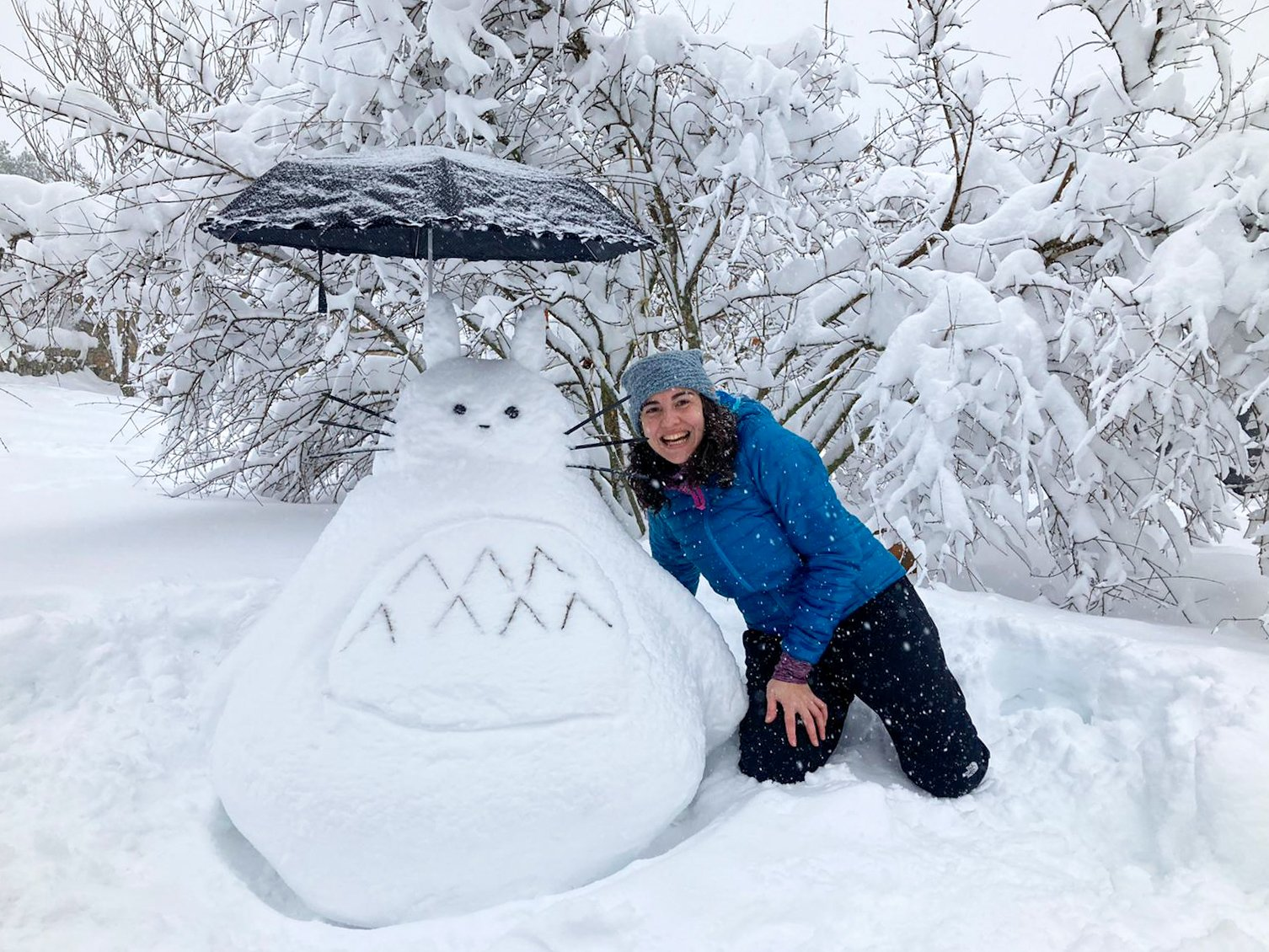 Totoro de nieve