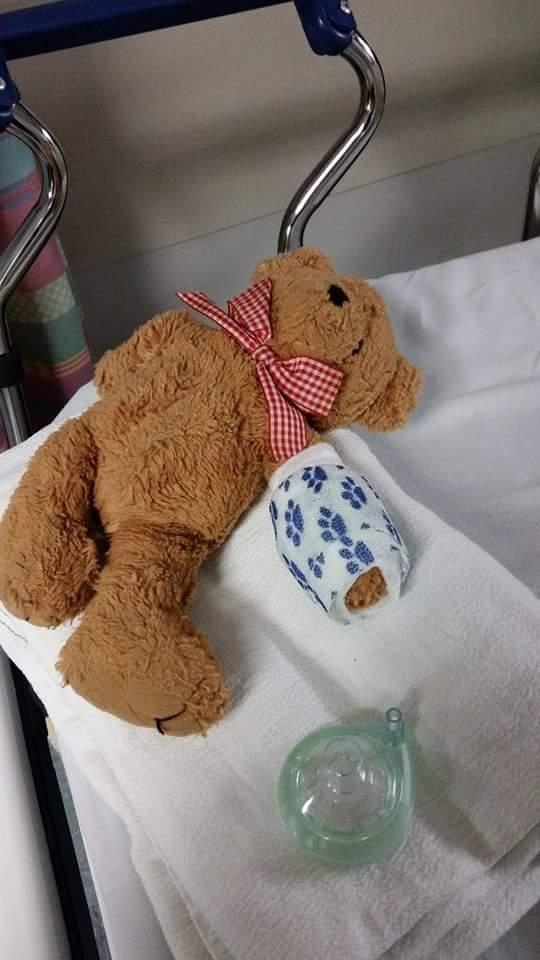 oso de peluche con escayola