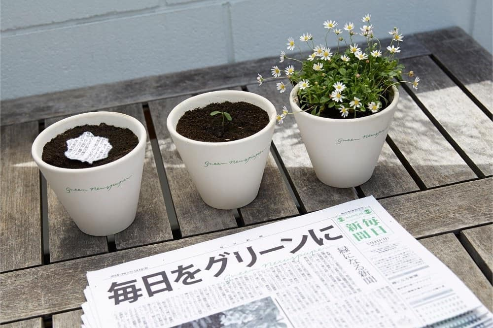 periodico plantas