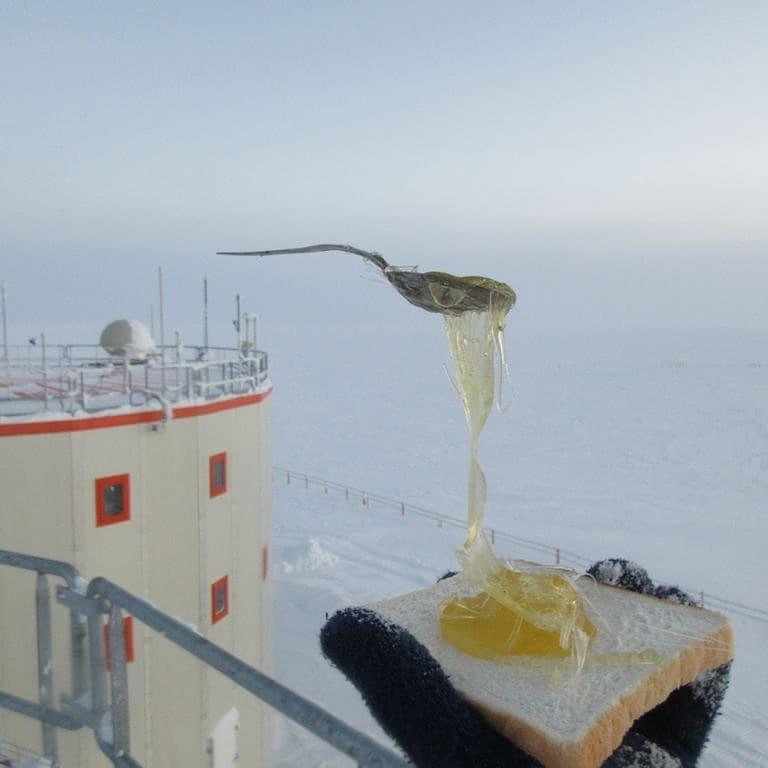 tostada con tenedor congelado por el frio