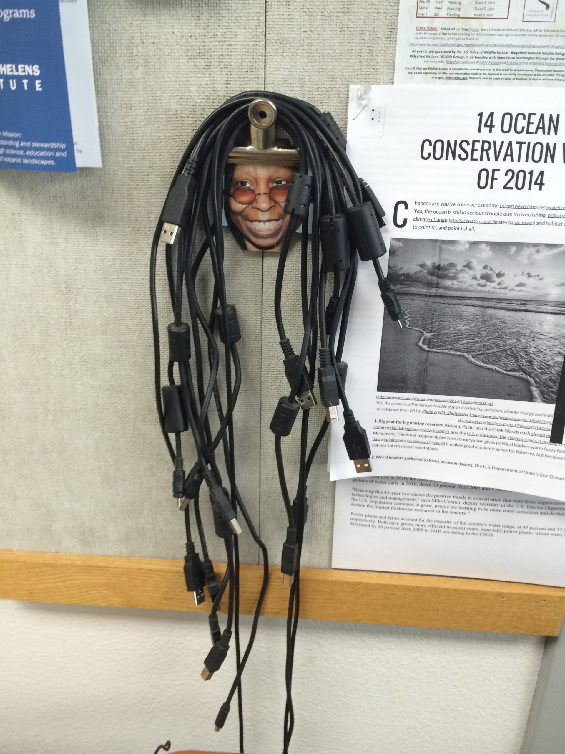 Whoopi Wolberg cables USB