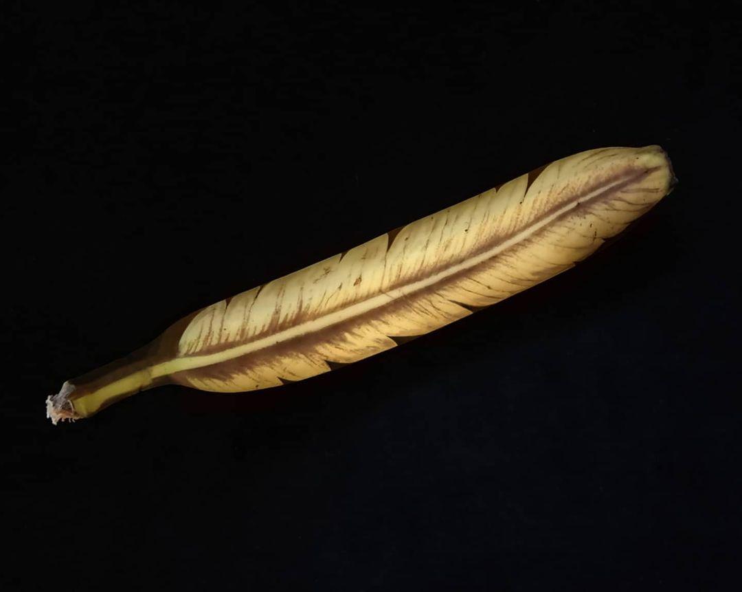dibujo pluma en platano