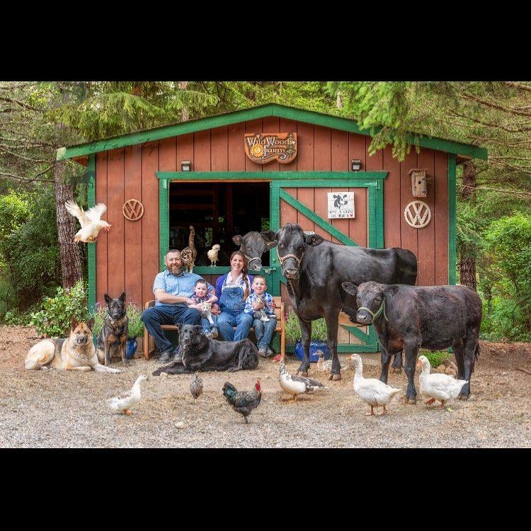 familia animales 2