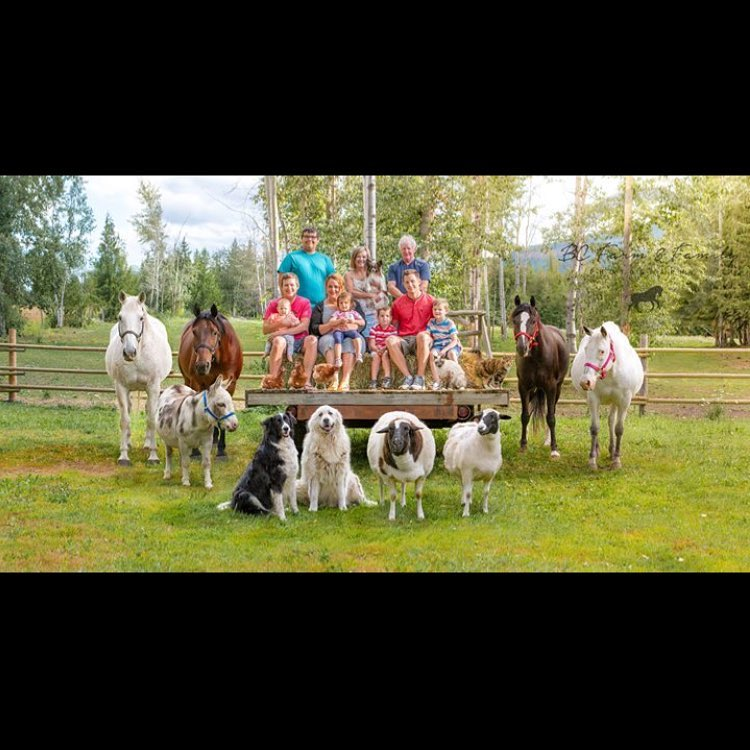 familia granja 2