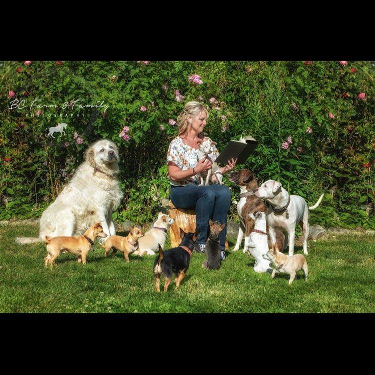 familia perros