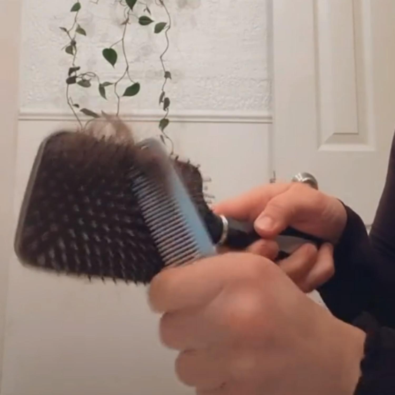 quitar pelos del cepillo
