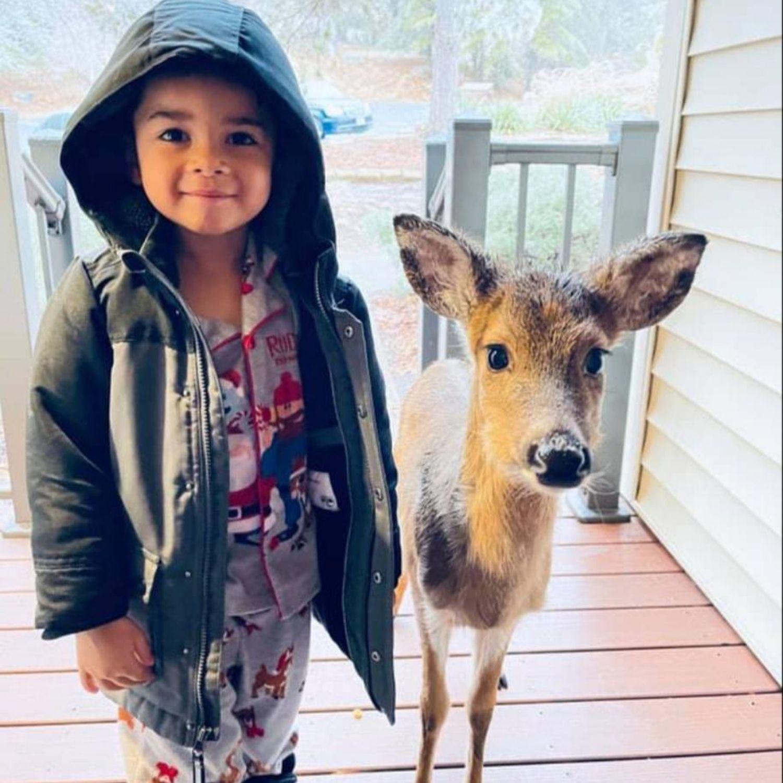 niño ciervo
