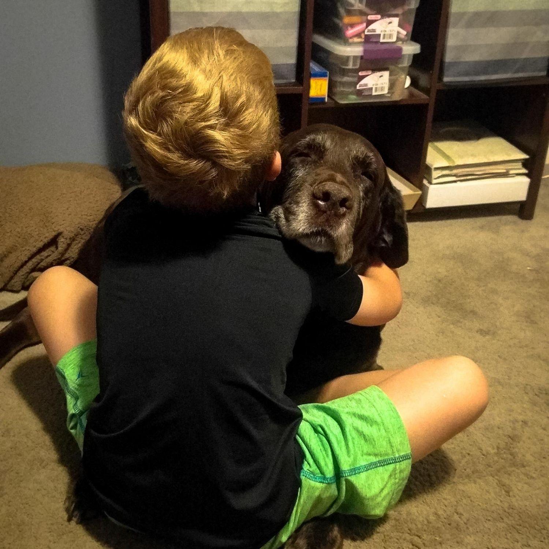 perro abrazo