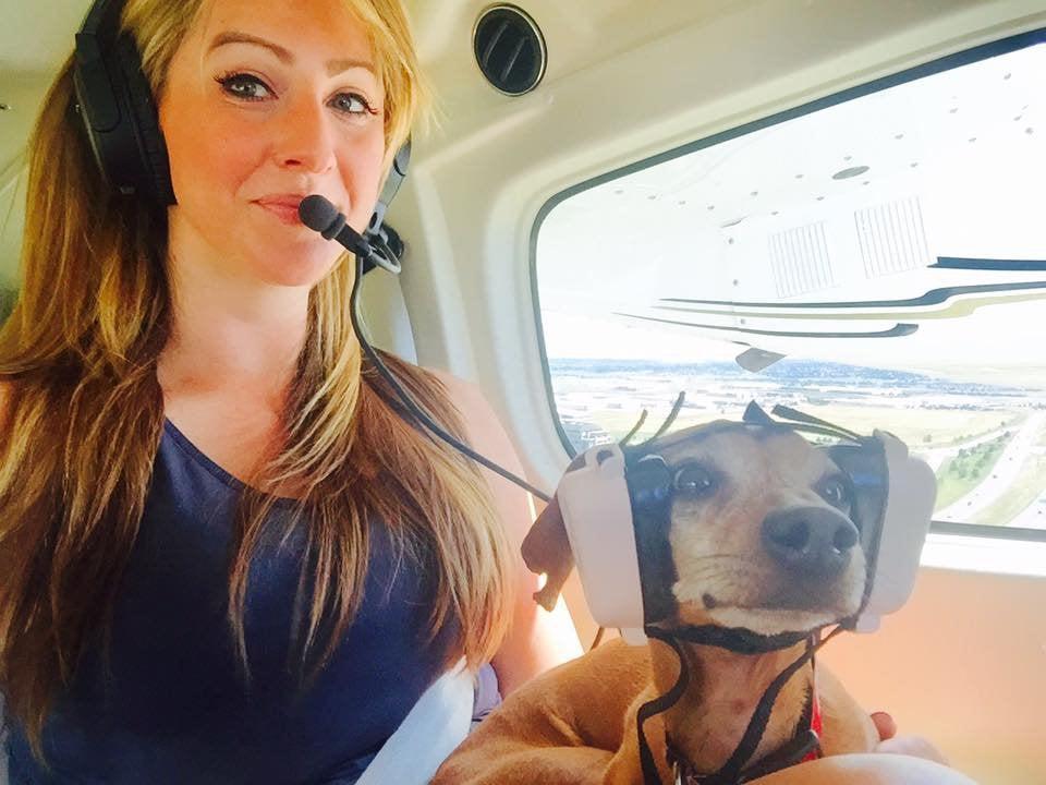 perro con cascos en avion