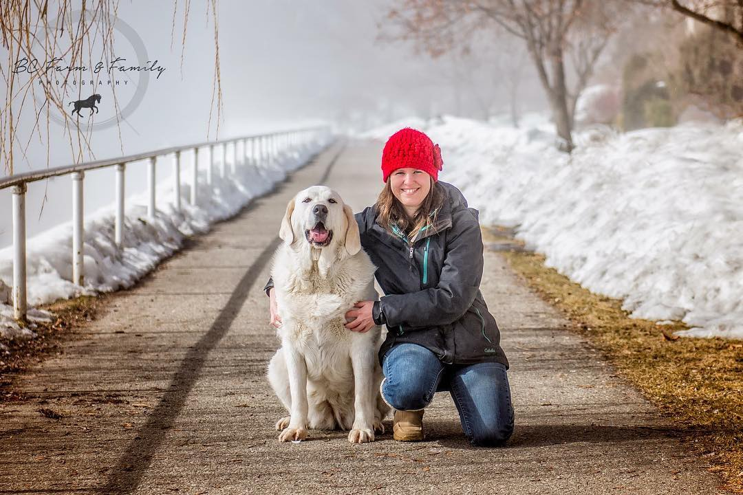 tasha perro