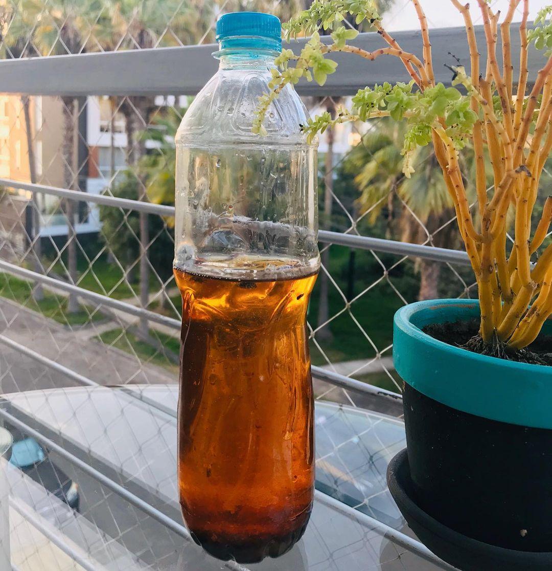 aceite en botella de plastico