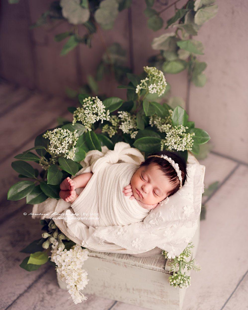 bebés recién nacidos fotografía profesional