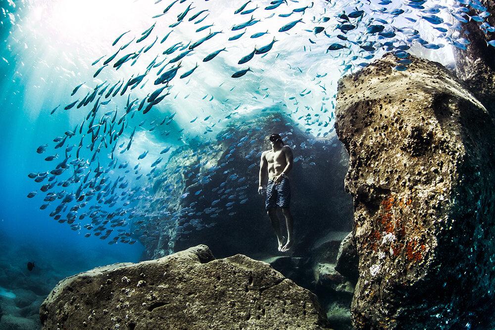 nadando entre peces