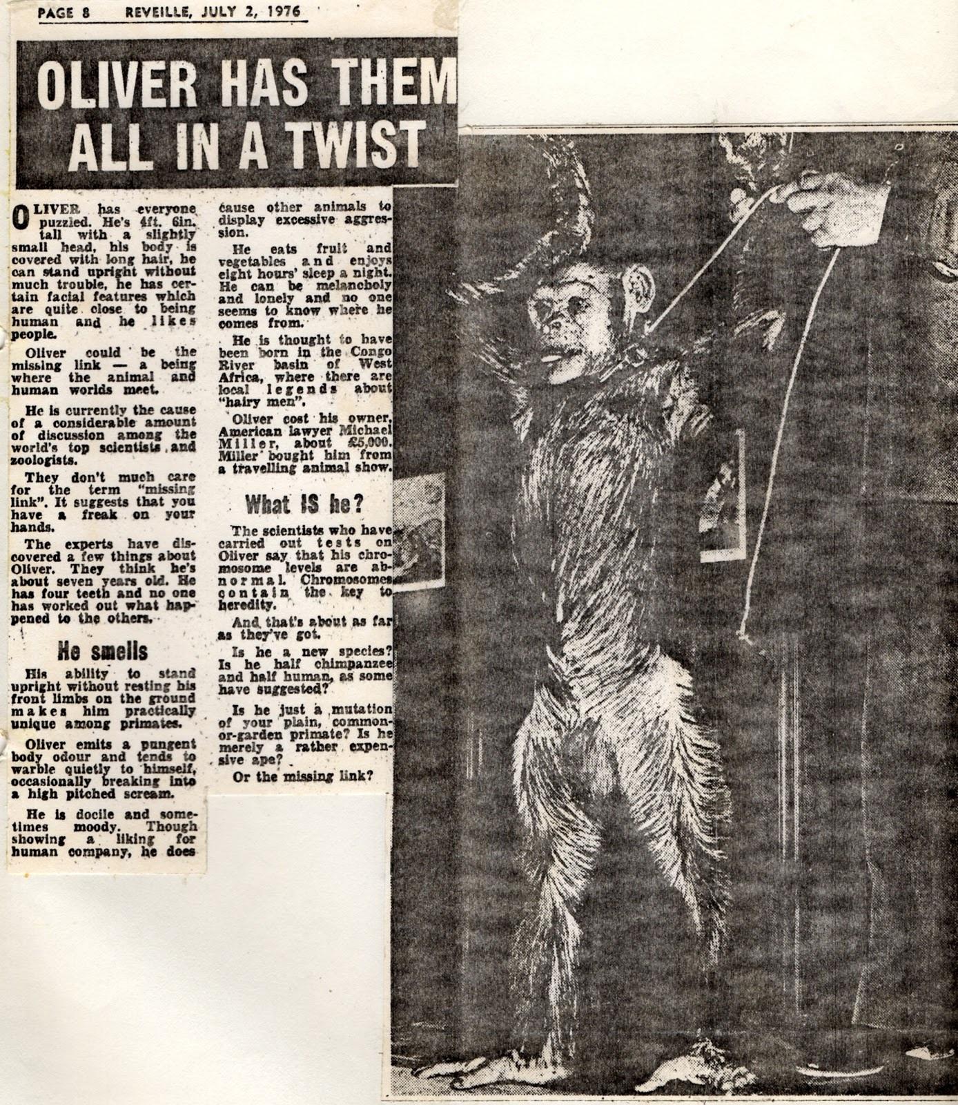 oliver el mono hibrido