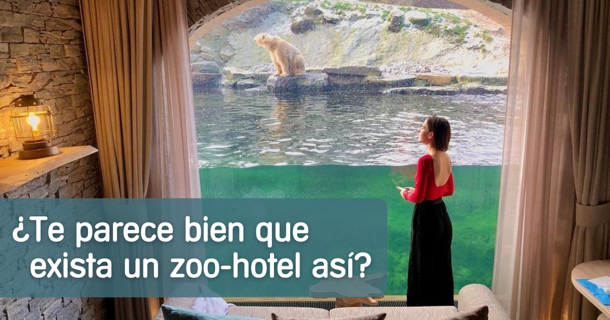 zoo-animales-hotel