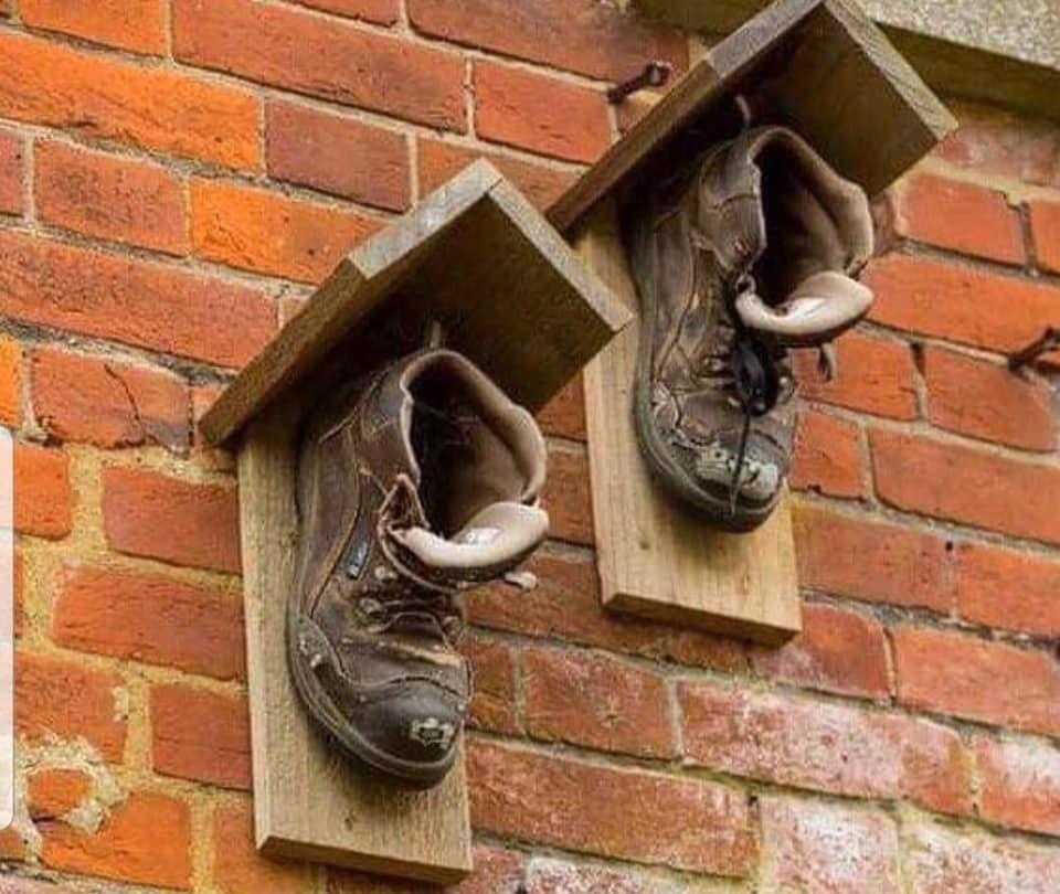 botas viejas usadas para nido de pájaros