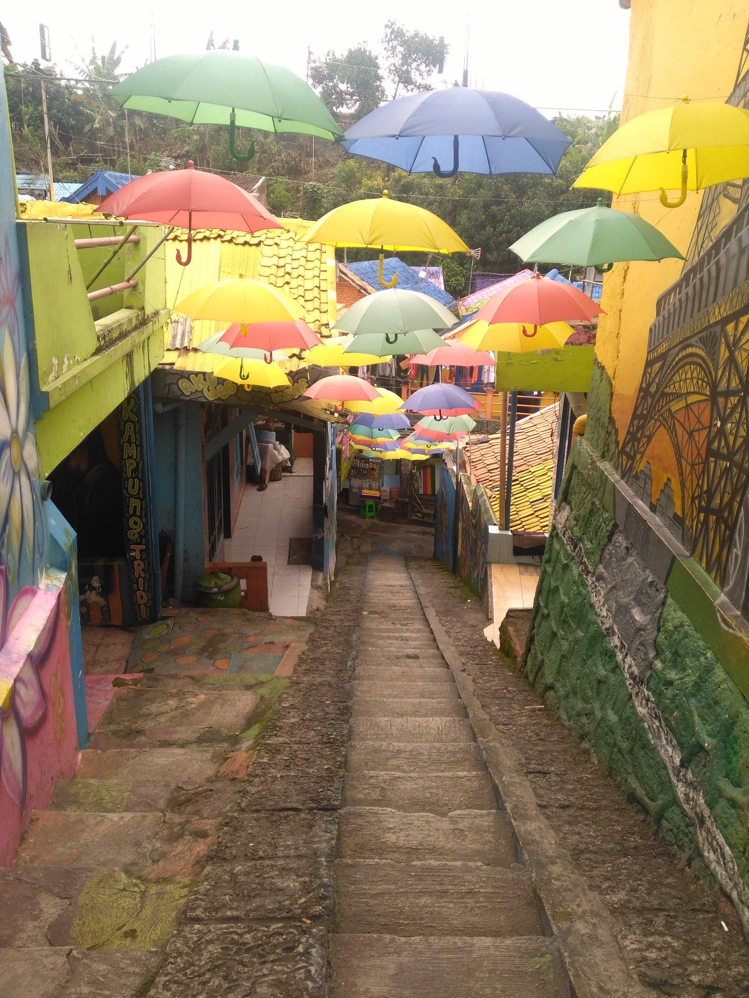 avenida de paraguas